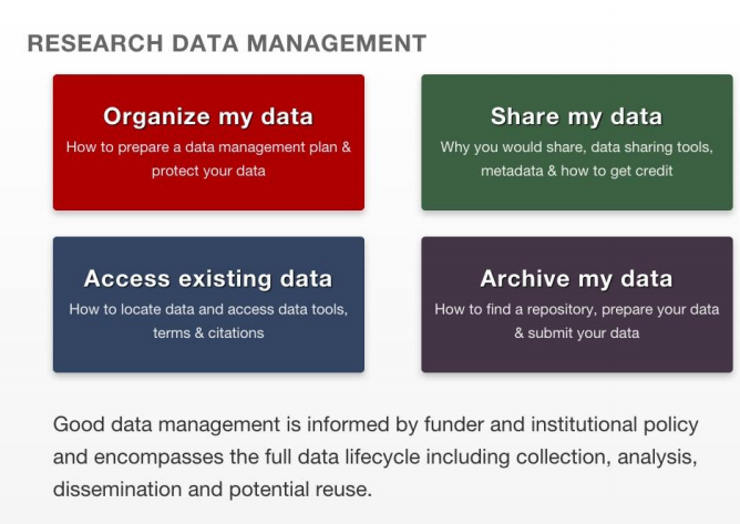 Research data management graphic