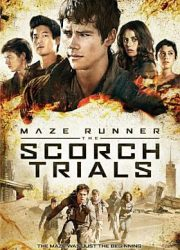 DVD - Home Use - The maze runner : The scorch trials